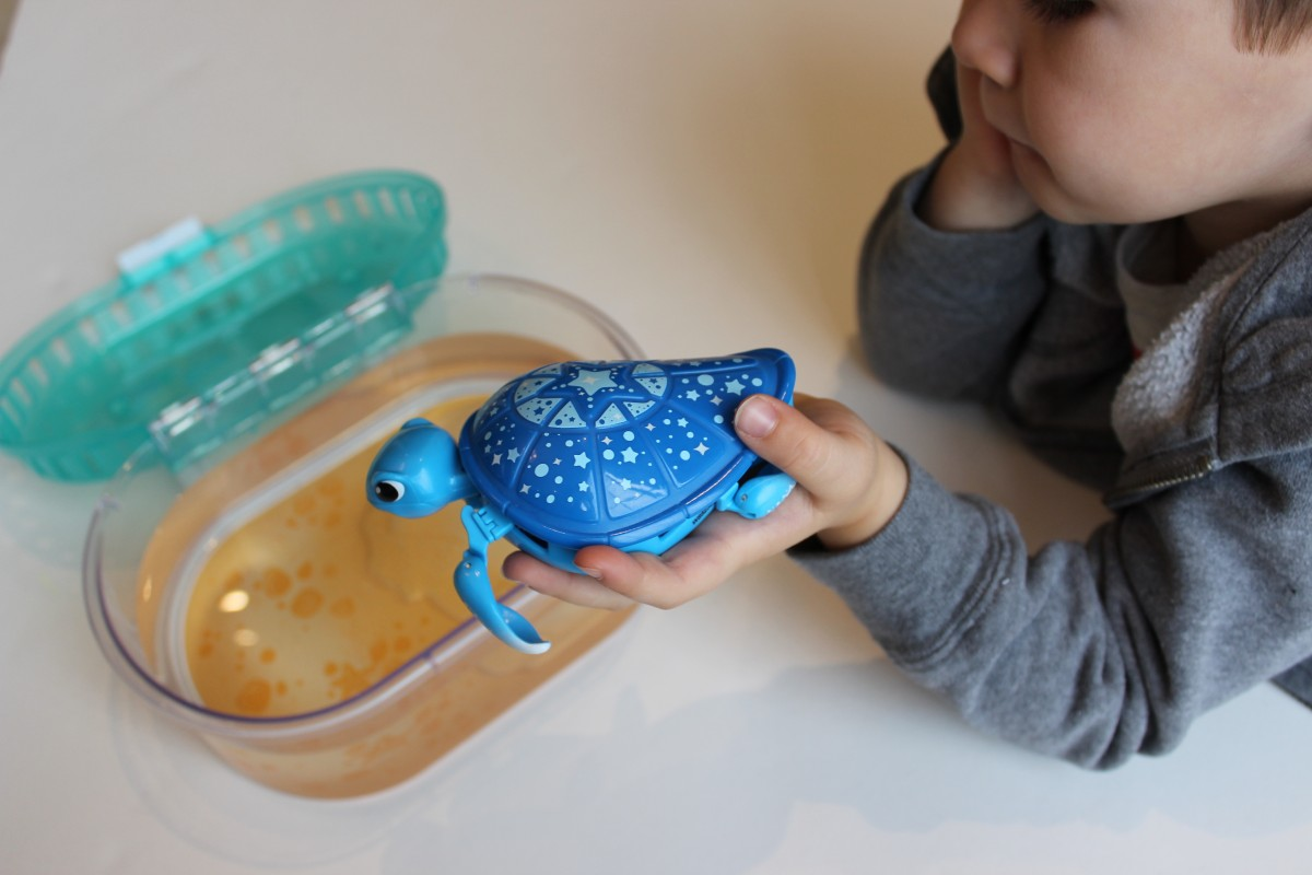 Little Live Pets Lil Turtle Tank Review + Giveaway ...