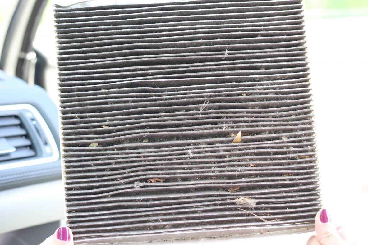 What a dirty cabin air filter looks like