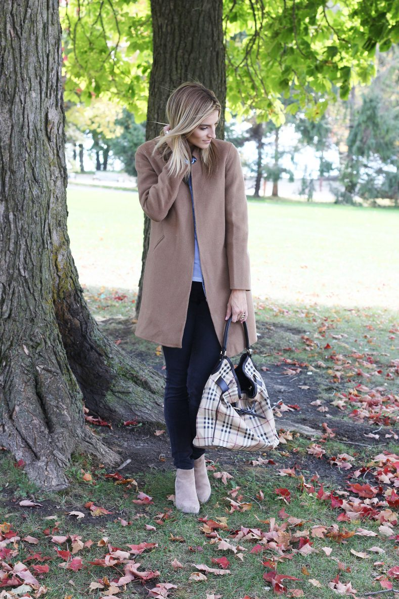 Camel and Chambray