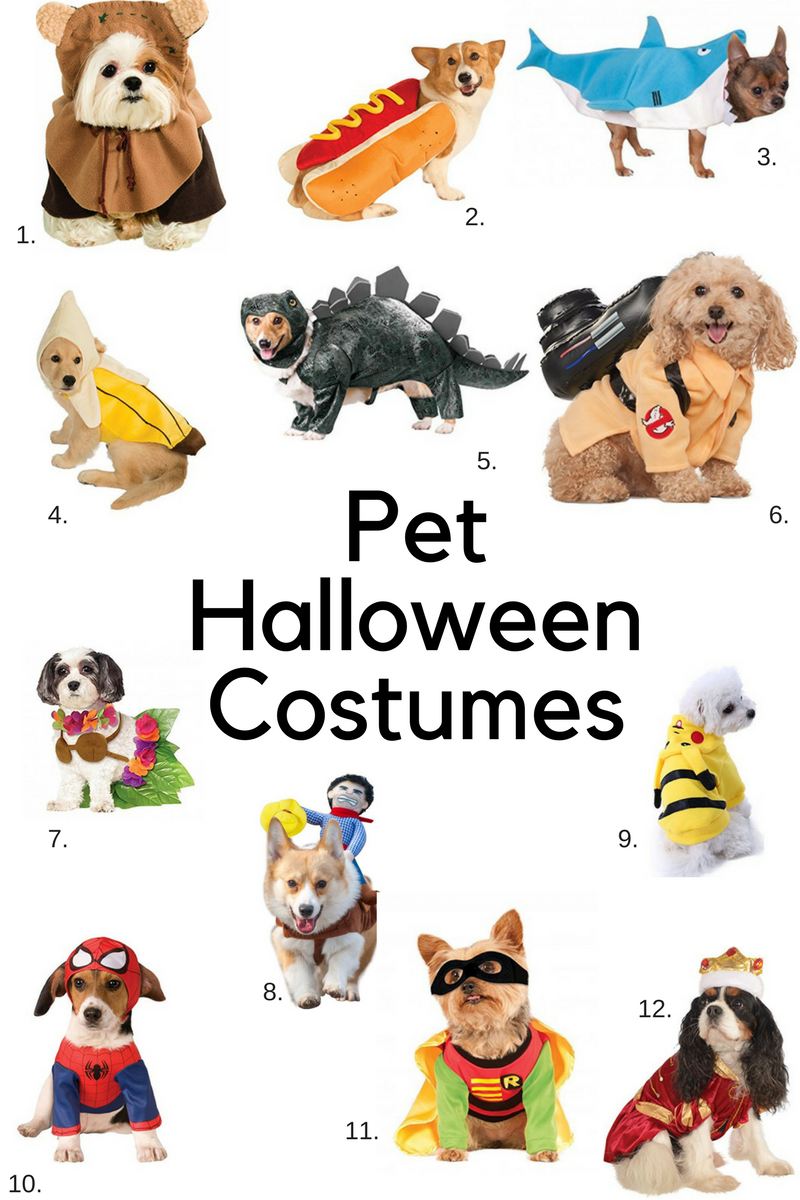 Best Pet Halloween Costumes