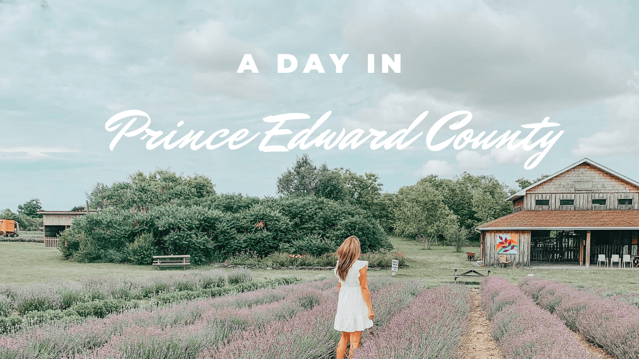 Spending the Day in Prince Edward County; Travel guide of prince edward county